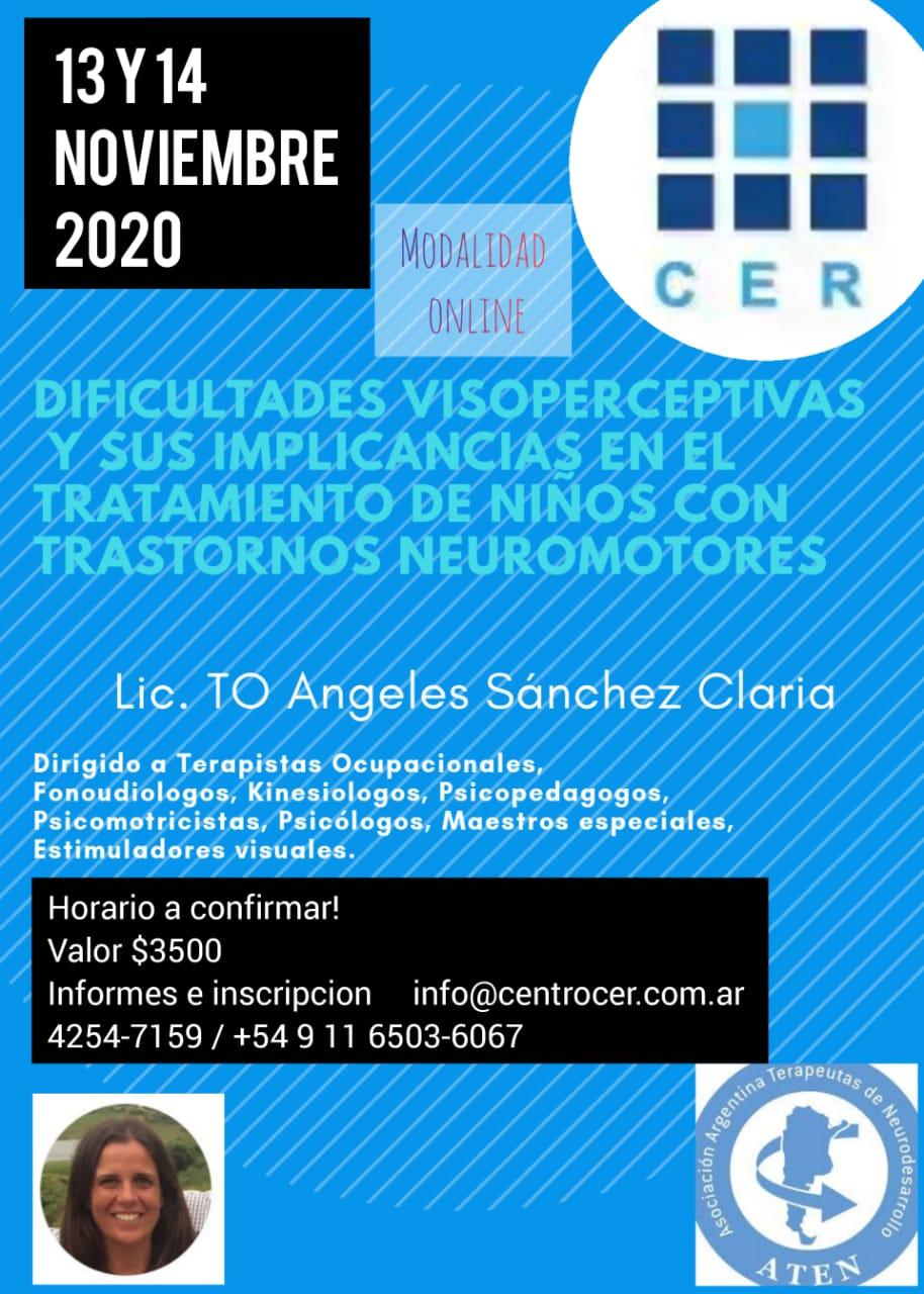 Dificultades Visoperceptivas y sus Implicancias en el Tratamiento de Niños con Trastornos Motores on line